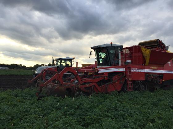 Daan Janssen, aardappelteler #3: Over de klagende boeren