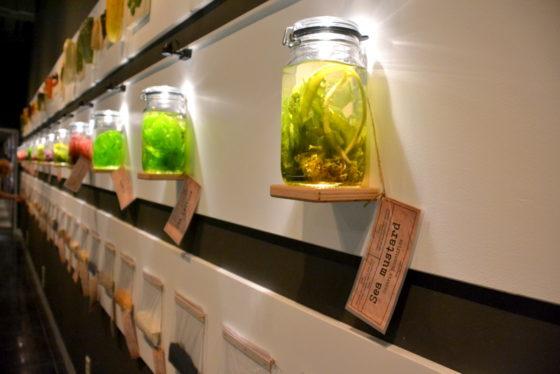 Tentoonstelling Foodtopia: voedselinnovatie van 1900 tot nu
