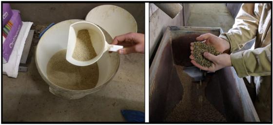 Varkenshouder Vermeer #3: Over voer, mest en antibiotica