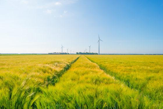 Groei biologische landbouw bereikt record in 2018