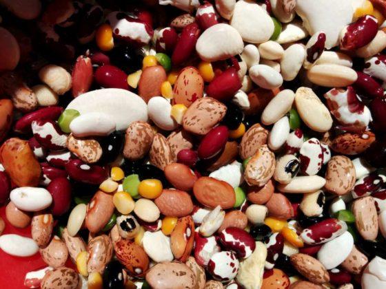 Focus plantaardige eiwitten in maaltijdbox Marley Spoon