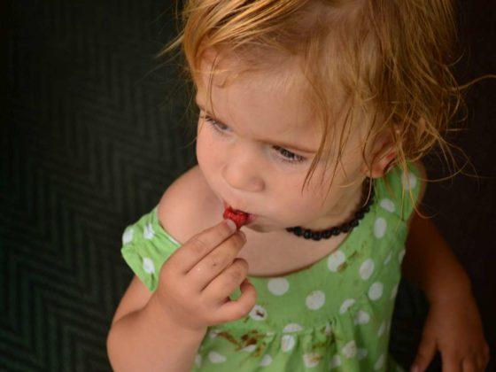'Kinderen die met groente en fruit spelen consumeren het eerder'