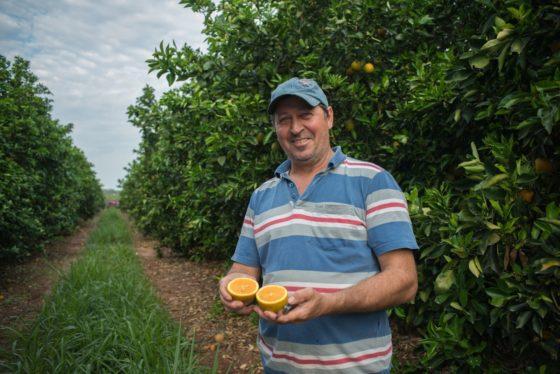Appelsientje breidt verduurzaming sinaasappelteelt uit
