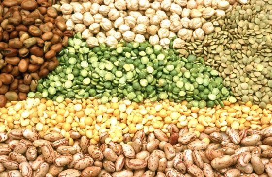 Zowel dierlijk als plantaardig eiwit verbetert spiergezondheid