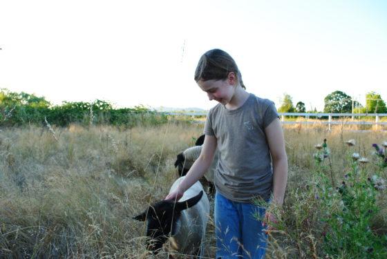 Veel aandacht voor biologische boeren tijdens Lekker naar de Boer-weekend