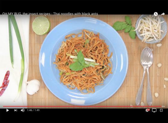 Oh My Bug inspireert met kookvideo's voor duurzame insectengerechten