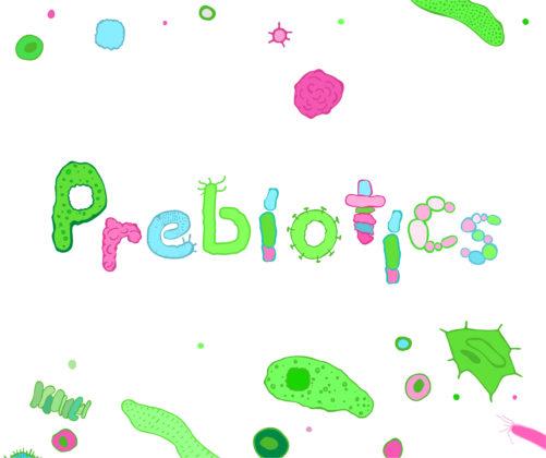 Placebo helpt even goed als prebiotica bij een spastische darm