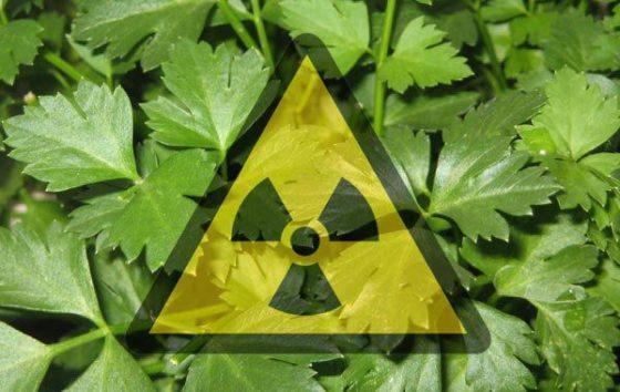 Nieuwe techniek voor opsporen radioactief voedsel