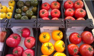 'Niet voldoende voedingsstoffen door Raw of ongezond eten'