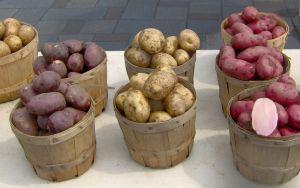 'Mensen komen niet aan van aardappels'
