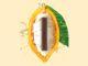 Productnieuws: Nestlé introduceert 70% pure chocolade volledig van cacaovrucht