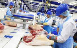 Wageningen Economic Research: vleesconsumptie groeit weer