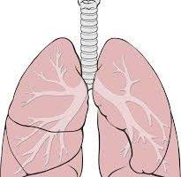 19/20 mar | Cursus COPD voor diëtisten